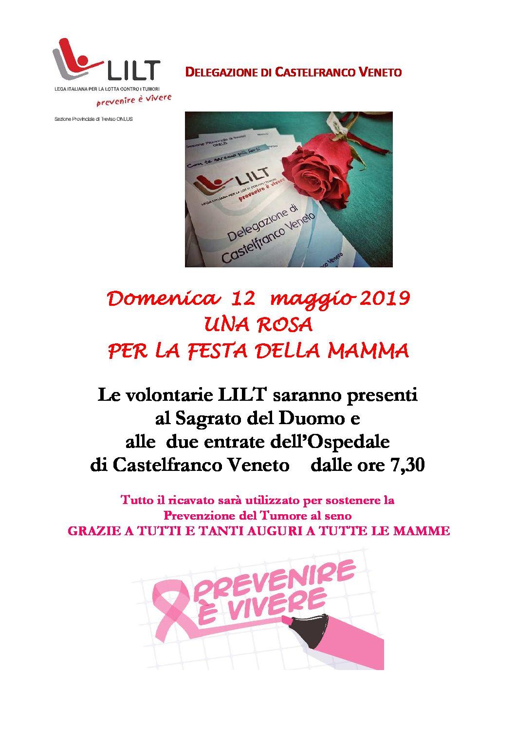 Castelfranco: ancora rose domenica 12 maggio